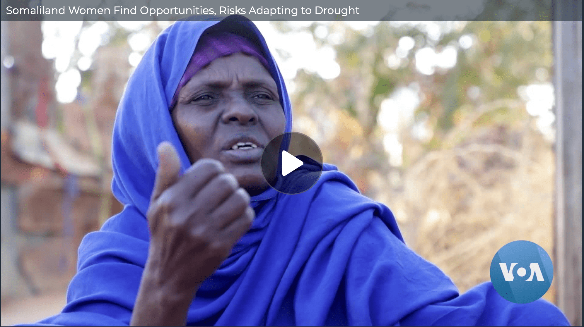 Somaliland Women Find Opportunities, Risks Adapting to Drought – Voice of America (image)