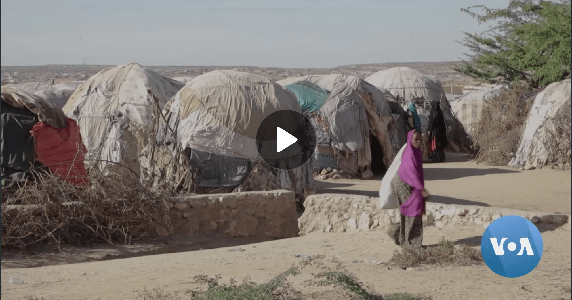 Climate Change Drives Gender-Based Violence in Somaliland – Voice of America (image)