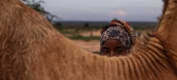 Female Genital Cutting Is on the Rise During COVID in Kenya – VICE World News (image)
